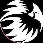 Phoenix opleidingen logo